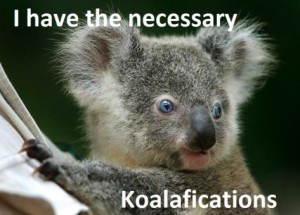 koalafications (2)